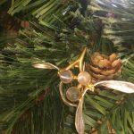 Mistletoe Moonstone Brooch